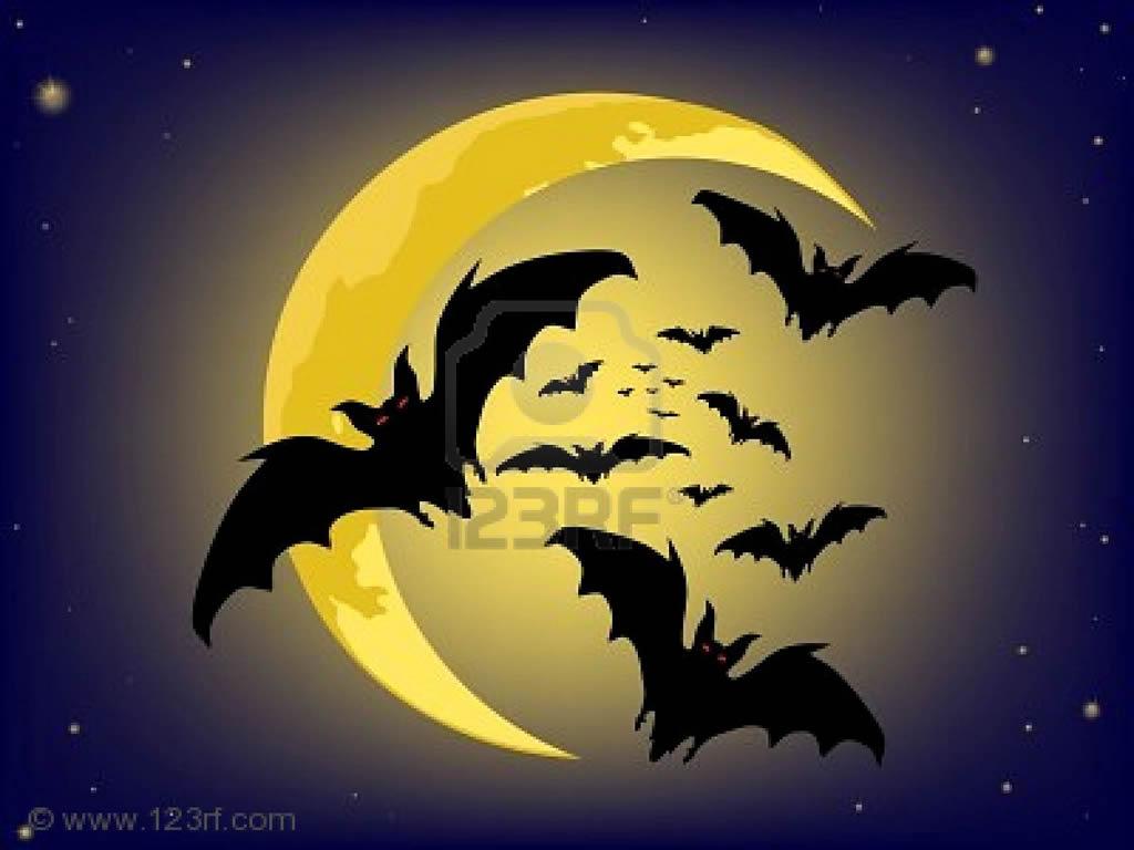 Murcielagos en la noche de halloween halloween - Murcielagos para halloween ...
